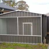 Aviary attached to shed