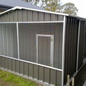 Aviary attached to shed.
