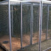 Huge aviary with dividers and protected walkway at the front